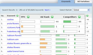 KeywordSpy interface